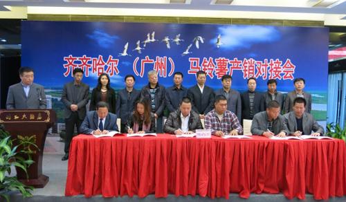 黑龙江马铃薯 广州产销对接会上签下合同5万吨